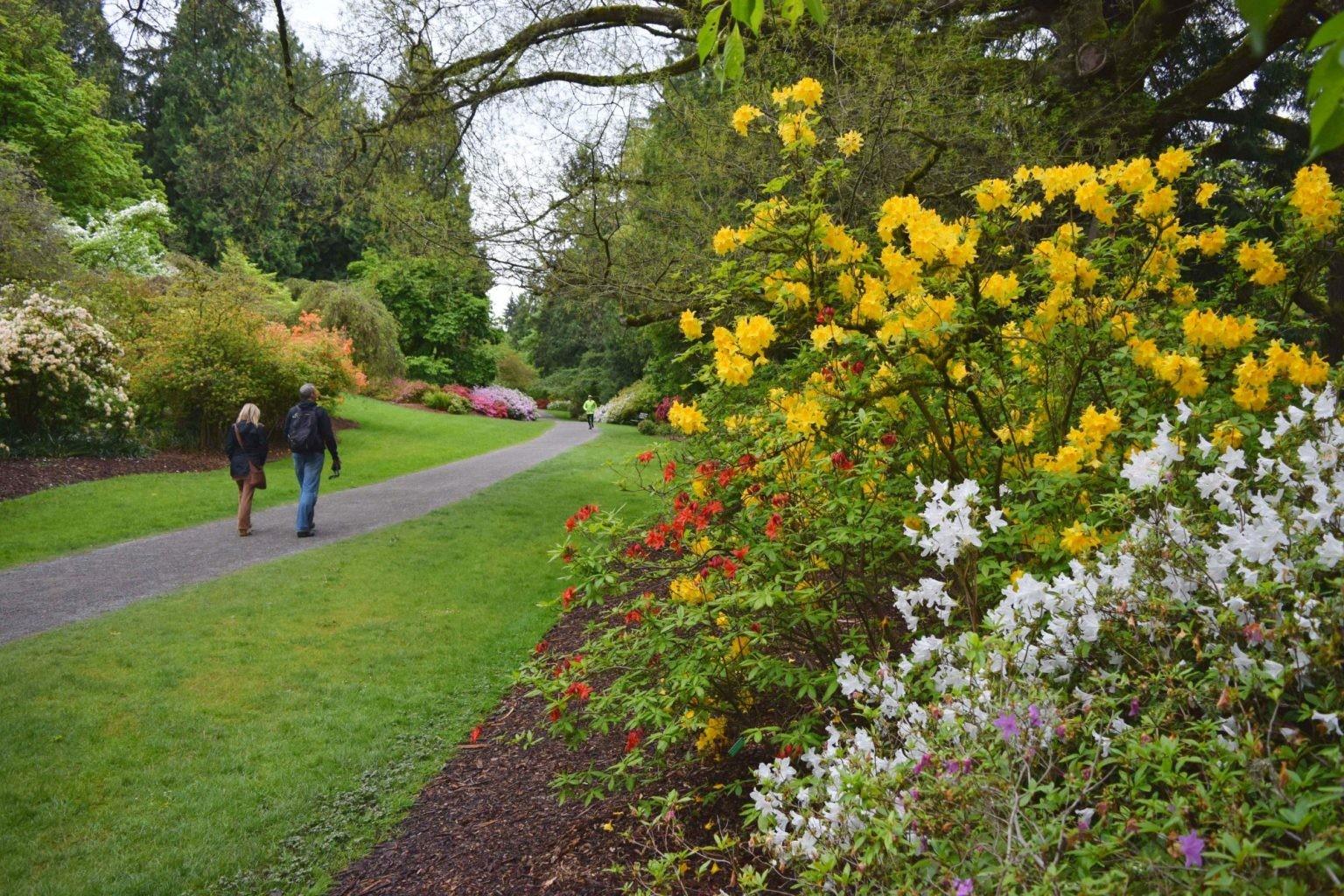 Washington-Park-Arboretum-UW-Botanic-Gardens