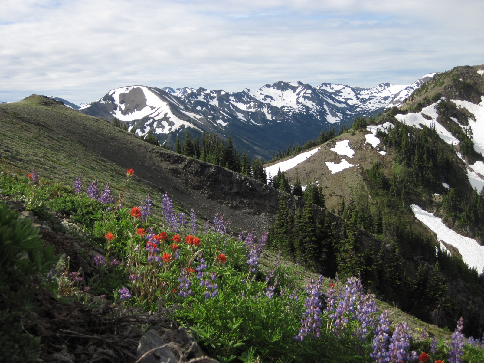 Olympic-National-Park02